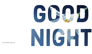 Good night unique greetings live png