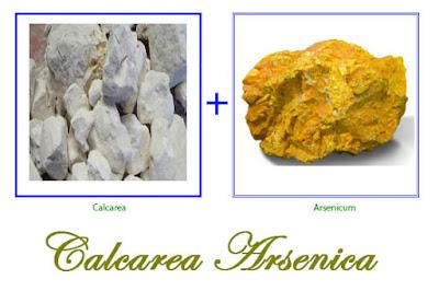 Calcarea Arsenica [ক্যাল্কেরিয়া আর্সেনিকা ] (আর্সেনাইট অফ লাইম) [ক্যাল্কে আর্স- Calc Ars ]
