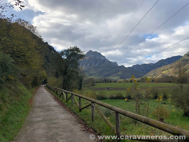 Senda del Oso. Asturias