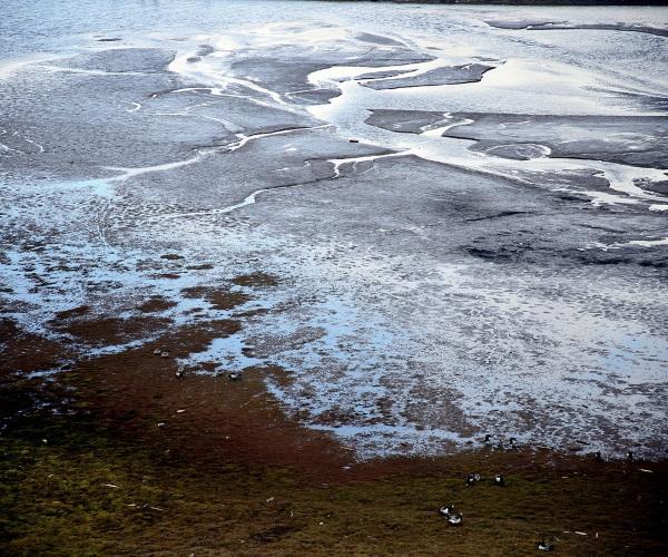 https://www.bioorbis.org/2014/12/voces-ja-ouviram-falar-no-permafrost.html
