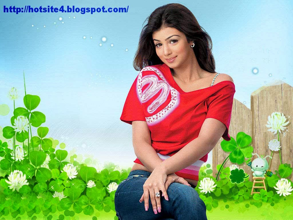 Ayesha Takia Bollywood Actress Hot Wallpaper - Bollywood -3057