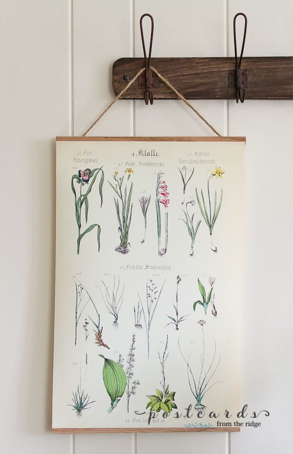 spring botanical free printable in hanging frame