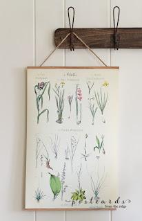 Vintage Floral Botanical Chart Printable