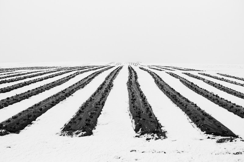Black and White Minimal Photography by Henry Shymonovych from Ukraine.