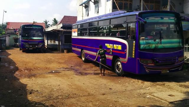 bus sriwijaya palembang bengkulu