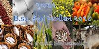 Gujarat B.sc. Agri Online Admission 2018