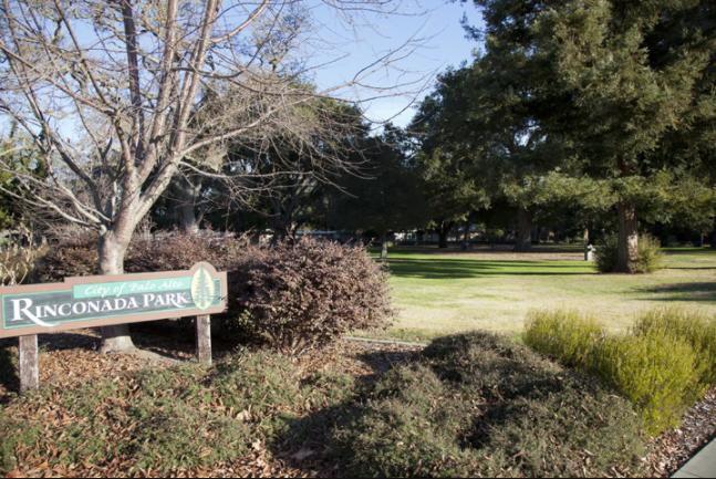Park In Palo Alto