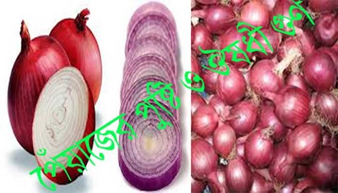 পেঁয়াজের গুণ । health benefits of onions in the body