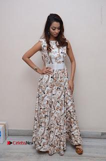 Telugu Actress Reshmi Thakur in Long Dress at Plus One ( 1) Audio Launch  0065.jpg