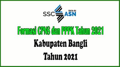 RINCIAN PENETAPAN KEBUTUHAN APARATUR SIPIL NEGERA DI LINGKUNGAN PEMERINTAH KABUPATEN BANGLI TAHUN ANGGARAN 2021