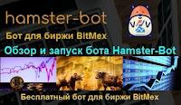 Hamster-Bot - обзор, настройка и установка бесплатного бота для биржи BitMex на VDS
