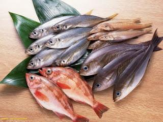 Bakso Ikan