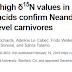 Os neandertais eram carnívoros de alto nível trófico