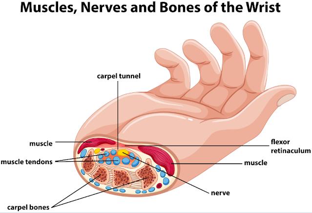 آلام المعصم - الرسغ والإبهام  الاسباب - الاعراض - المضاعفات وعلاج