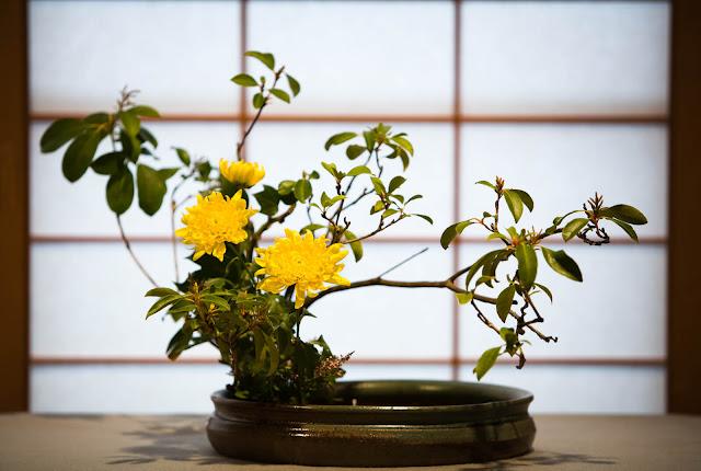 Sự phát triển lên đến đỉnh cao của nghệ thuật cắm hoa ở Nhật có thể được lý giải bởi tình yêu của người Nhật đối với thiên nhiên. Người Nhật luôn cảm thấy có một mối liên hệ, gắn bó chặt chẽ với thiên nhiên xung quanh, và ngay cả trong đời sống hiện đại, sự đô thị hóa diễn ra mạnh mẽ, đường nhựa, bê tông trải dài khắp nơi thì họ vẫn mong muốn tạo một chút không gian thiên nhiên ở gần bên.