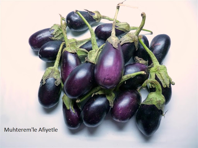 patlıcan resmi