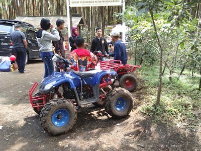 Mandalawangi Kamojang Bandung Garut