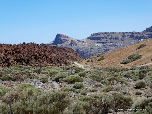 naturaleza en el Teide