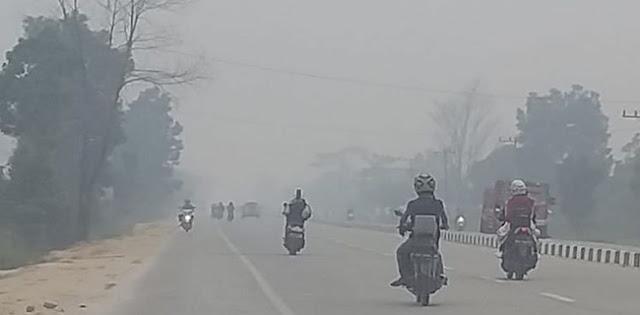 Darurat, DPR Desak Jokowi Gerak Cepat Tangani Kabut Asap Riau