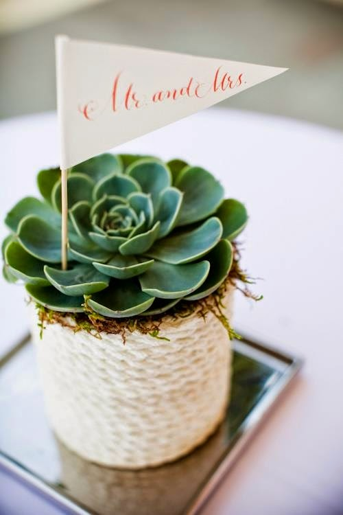 environmentally friendly wedding favor