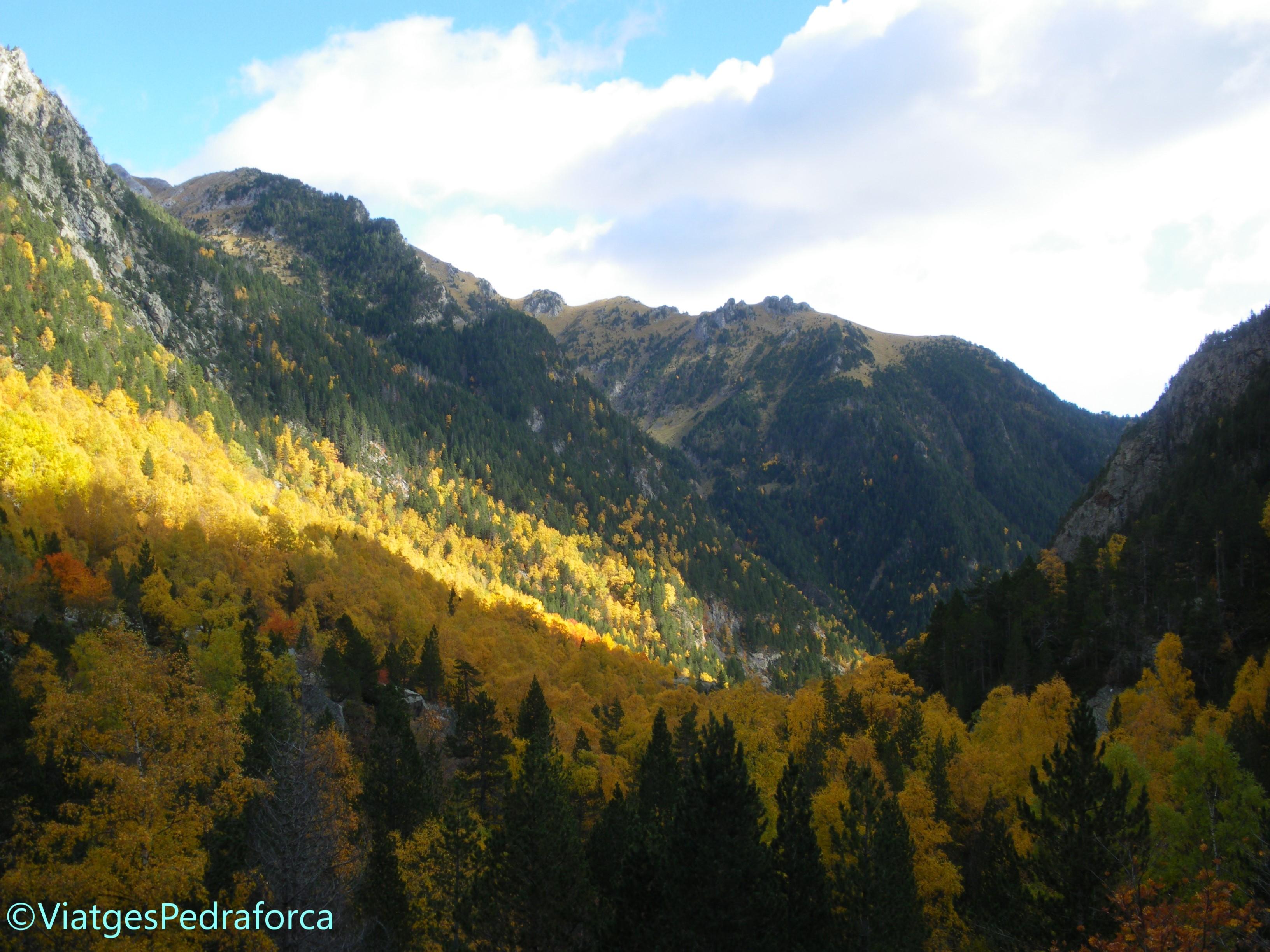 Eriste, Aigüeta de Grist, Vall de Benasc, Pirineus, Aragó, Osca, senderisme, fotografia de natura