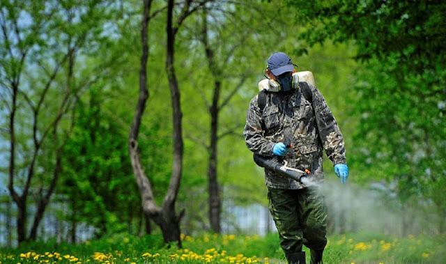 Уфимцев предупреждают об обработке зеленых зон от клещей.