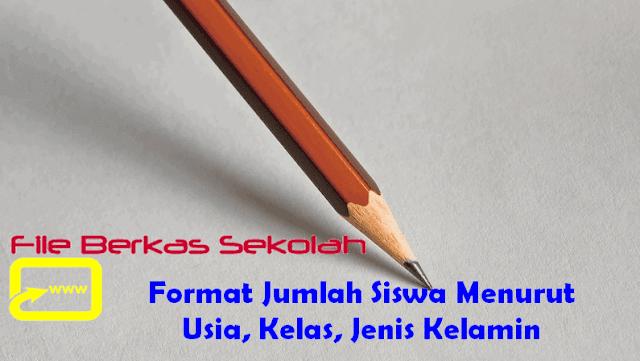 Format Jumlah Siswa Menurut Usia, Kelas, Jenis Kelamin