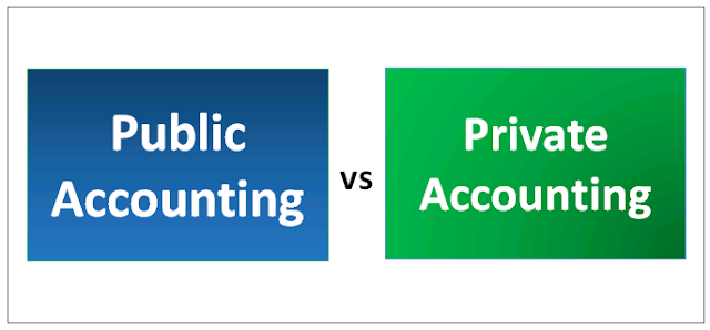 Difference Between Public Accounting And Private Accounting