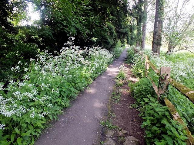 sendas junto al río en el pueblo de Bibury