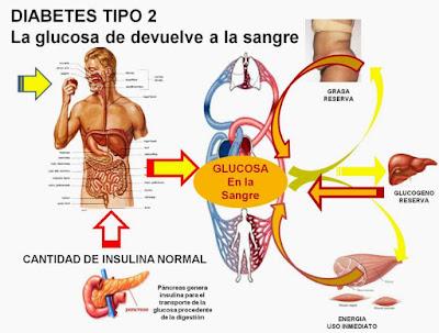 Afectaciones metabólicas diabetes