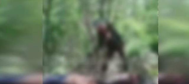 Grupo Delta del CJNG graba conquista en campamento rival en Tepalcatepec, Michoacán, por lo menos 2 fueron ultimados y jugaron con sus cuerpos