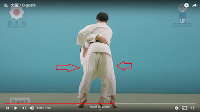 Picture of O-Goshi with arrows to show Uke and Tori's hips are completely aligned