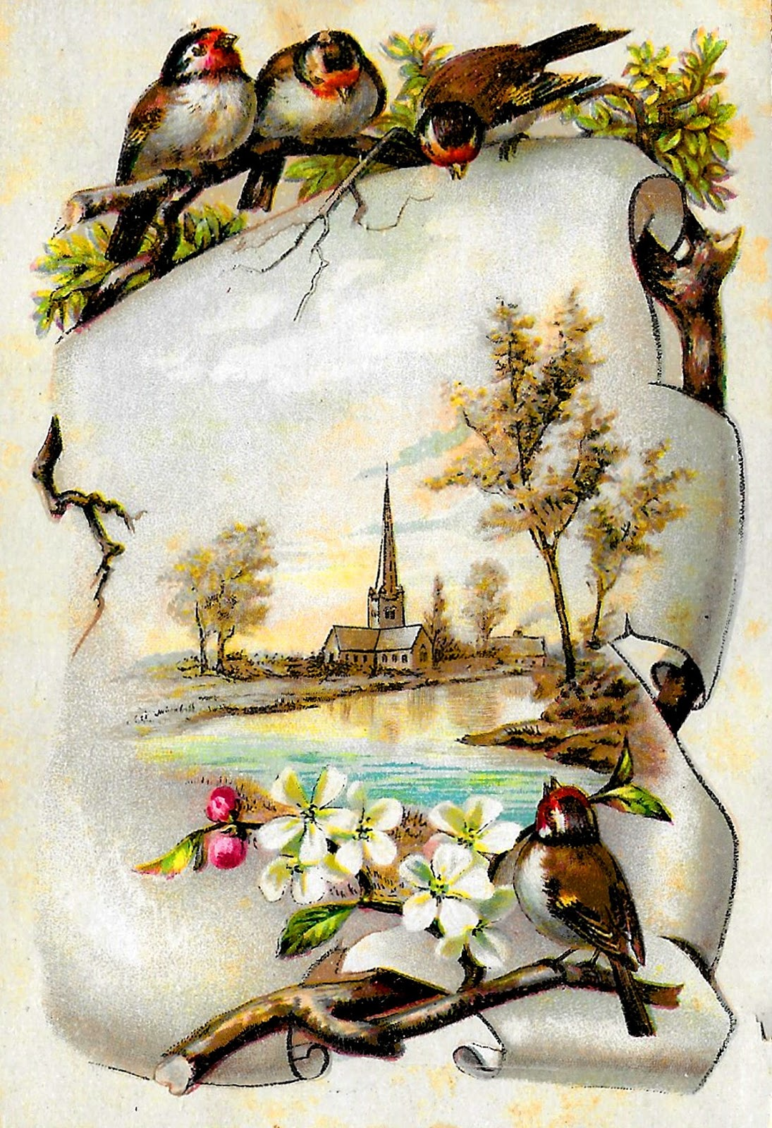 Antique Images Royalty Free Bird Flower Rose Cherry Blossom
