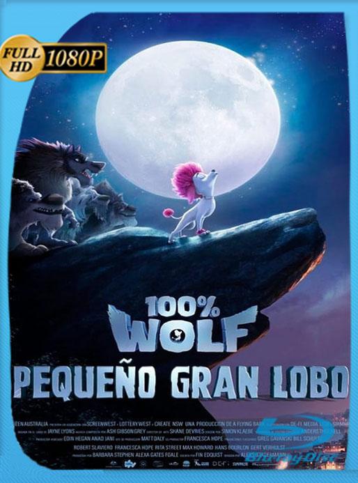 100% Wolf: Pequeño gran lobo (2020) 1080p BRRip Latino [GoogleDrive] [tomyly]