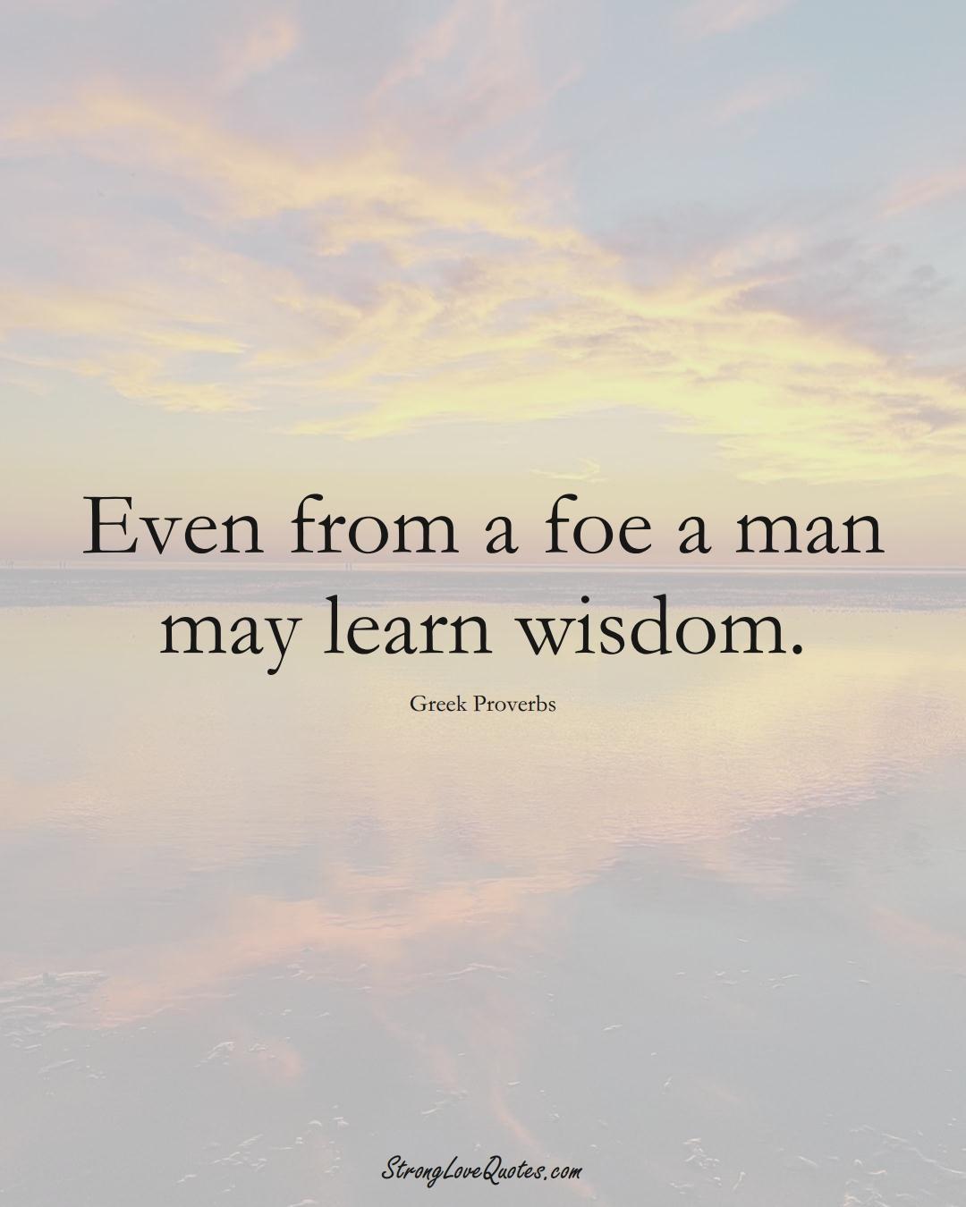 Even from a foe a man may learn wisdom. (Greek Sayings);  #EuropeanSayings