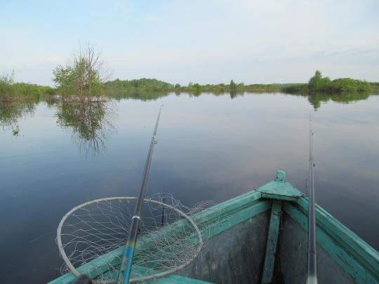 рыбалка на поплавочную удочку с лодки