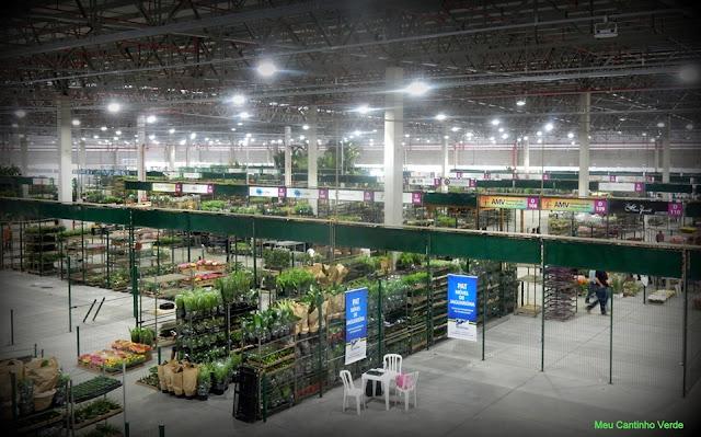 Novo mercado de flores da região de Holambra