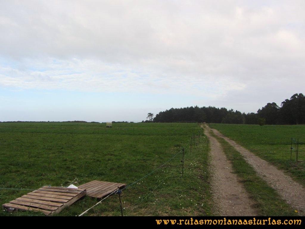 Ruta Artedo, Lamuño, Valsera: Pradera en Lamuño
