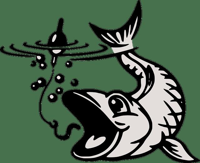 Cara Pemijahan Ikan Gabus Di Kolam Secara Alami Dan Cepat