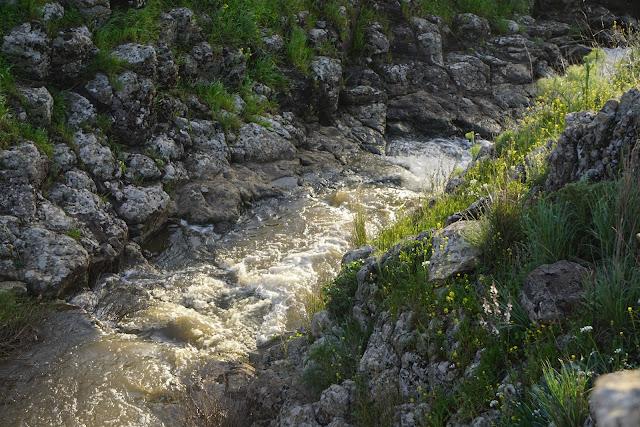 נקיק זורם בנחל עורבים