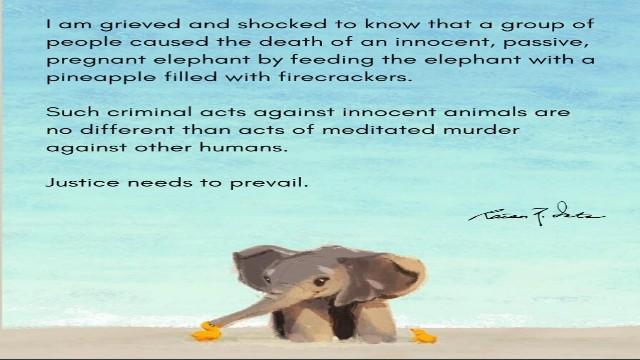 Ratan-Tata-protests-over-killing-of-pregnant-elephants-in-Kerala-640
