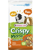 Dangerous food for guinea pigs
