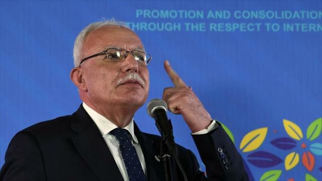 Palestina insta a relatores de la ONU a exponer crímenes de Israel