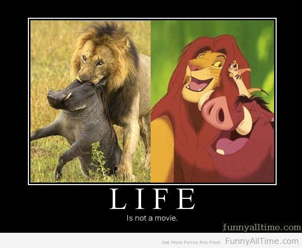 Life is temporary,harsh but interesting.These are the some harsh truth of life