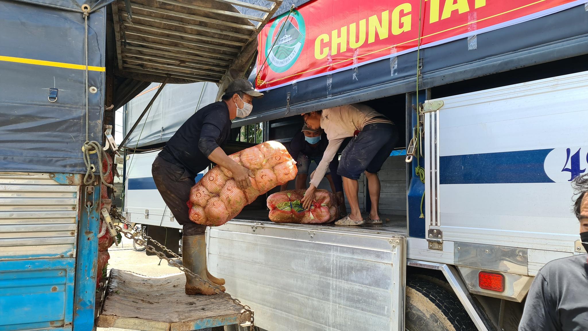 Từ hôm nay 3.9, TP.Đà Lạt thu mua nông sản cho các nông hộ ở Đà Lạt. Ảnh: Lâm Viên