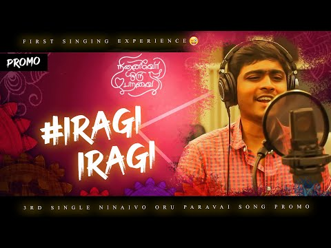 Iragi Iragi Song Lyrics In Tamil – Ninaivo Oru Paravai