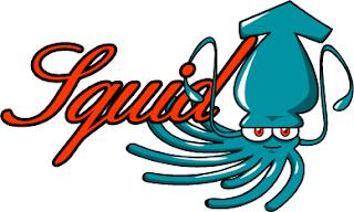 Mengenal Apa Itu Squid Proxy