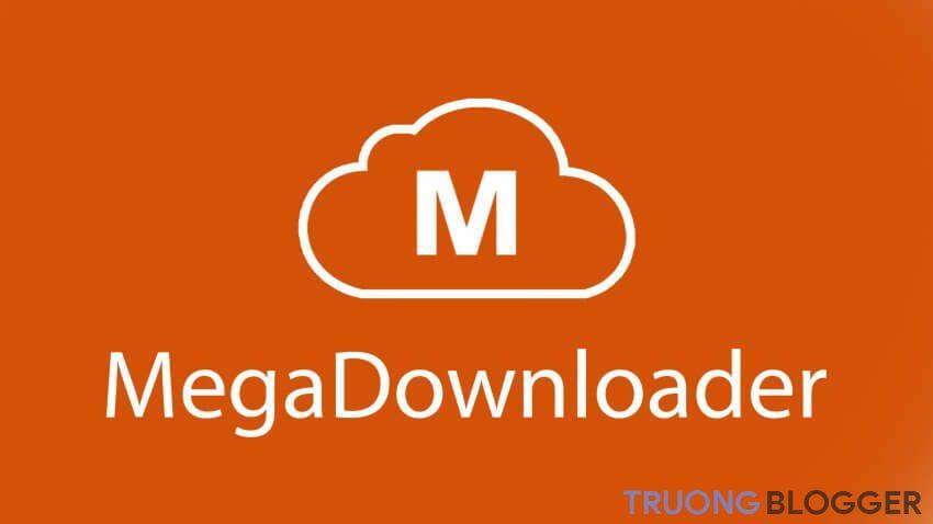 Megadownloader là gì?