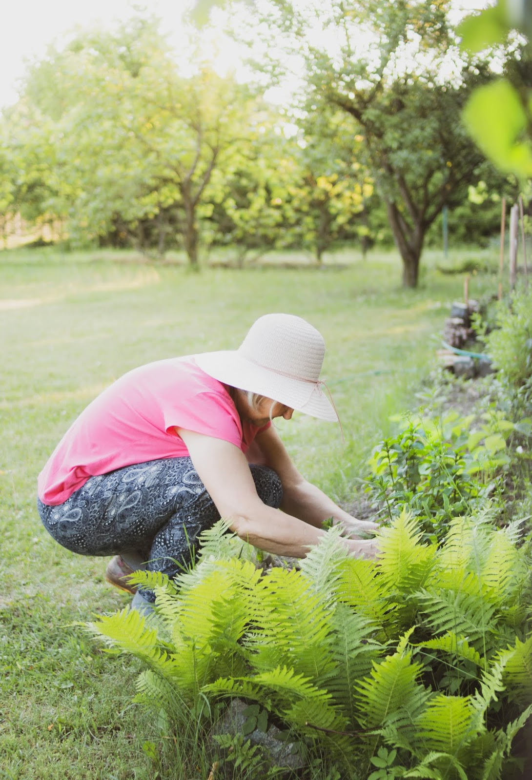 Gardening for Health and Wellness: Start a Garden and Harvest the Health Benefits