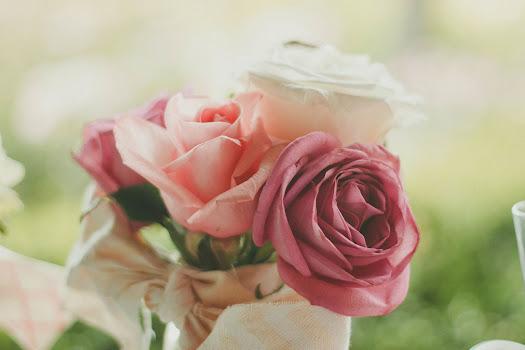 أحلى الورود ورق حائط 7